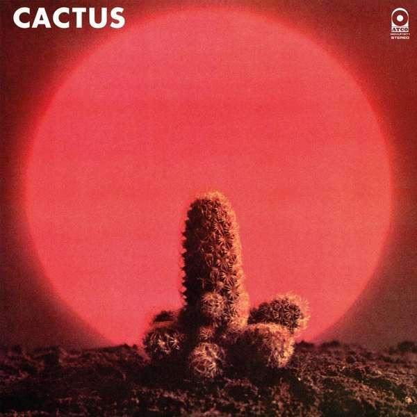 Cactus Cactus - Cactus cactus print makeup bag