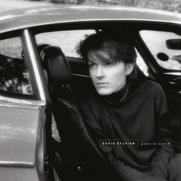 David Sylvian - Gone To Earth (2 LP)