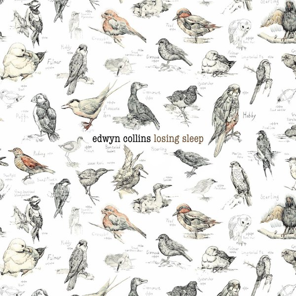 Edwyn Collins Edwyn Collins - Losing Sleep (2 LP) фил коллинз phil collins testify 2 lp