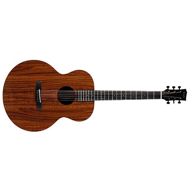 Акустическая гитара Enya EM-X1+