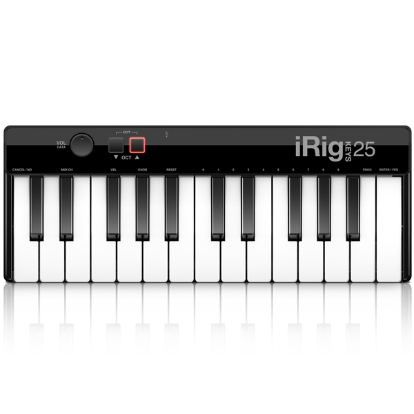 MIDI-клавиатура IK Multimedia iRig Keys 25 клавиатура dell kb522 wired business multimedia keyboard black usb 580 17683