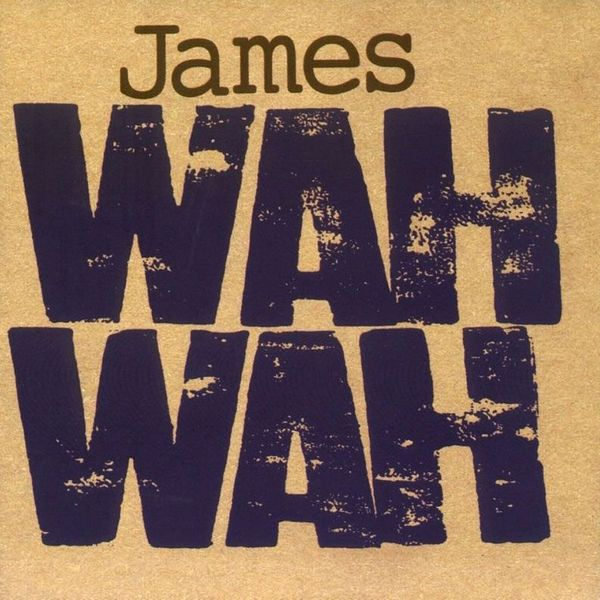 JAMES JAMES - Wah Wah 2 LP