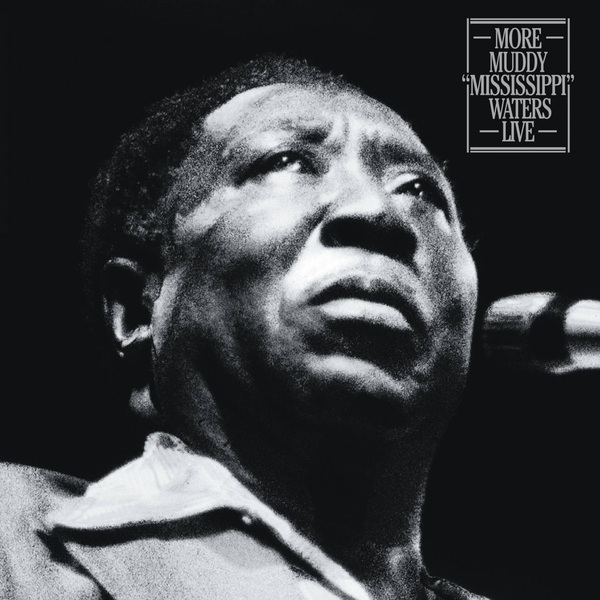 Muddy Waters Muddy Waters - More Muddy mississippi Waters Live (2 LP) rushing waters