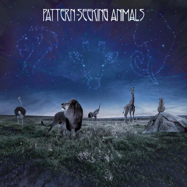 Pattern-seeking Animals - (2 Lp + Cd, 180 Gr)