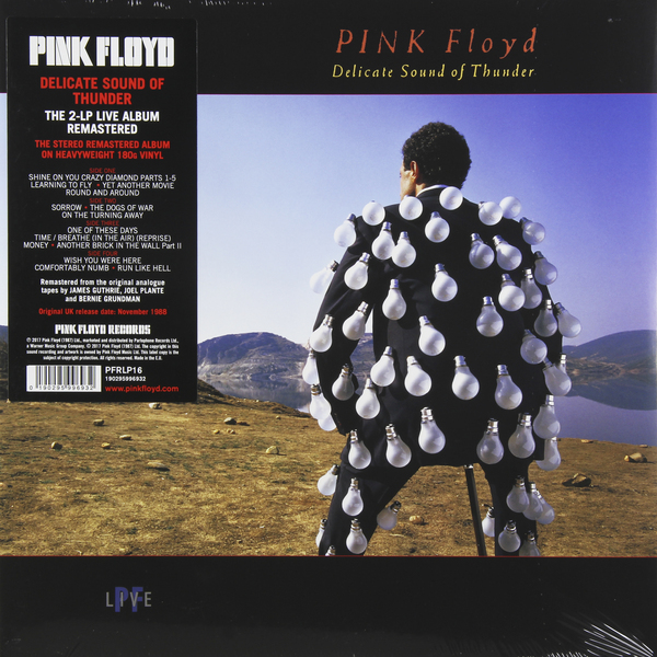 Pink Floyd Pink Floyd - Delicate Sound Of Thunder (2 LP) cute pig abs 2 led white light keychain w sound effect black pink 3 x ag10