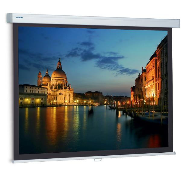 Экран для проектора Projecta ProScreen (16:9) 119 162x280 Matte White