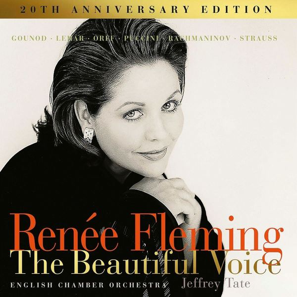 Renee Fleming Renee Fleming - Beautiful Voice (2 LP) футболка wearcraft premium slim fit printio горилла
