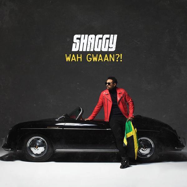 Shaggy Shaggy - Wah Gwaan?! (2 LP) фото