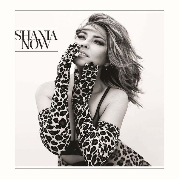 Shania Twain Shania Twain - Now (2 LP) shania twain shania twain up red 2 lp