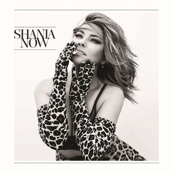 Shania Twain Shania Twain - Now (2 LP) цена 2017