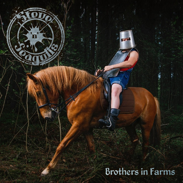 Steve'n'seagulls Steve'n'seagulls - Brothers In Farms (2 LP)