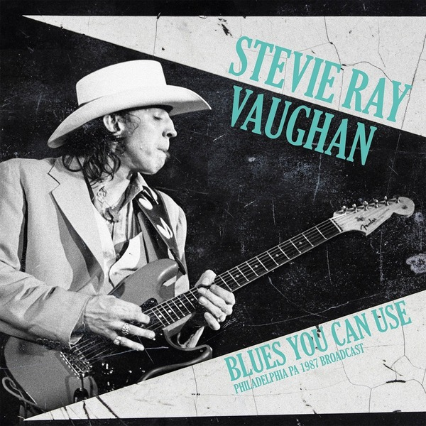 Stevie Ray Vaughan Stevie Ray Vaughan - Blues You Can Use (2 LP) stevie nicks stevie nicks crystal visions… the very best of stevie nicks 2 lp