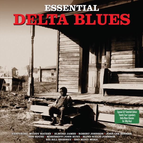 Various Artists Various Artists - Essential Delta Blues (2 LP)