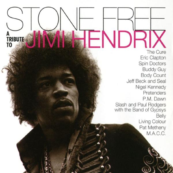 Various Artists - Stone Free (a Tribute To Jimi Hendrix) (colour, 2 LP)