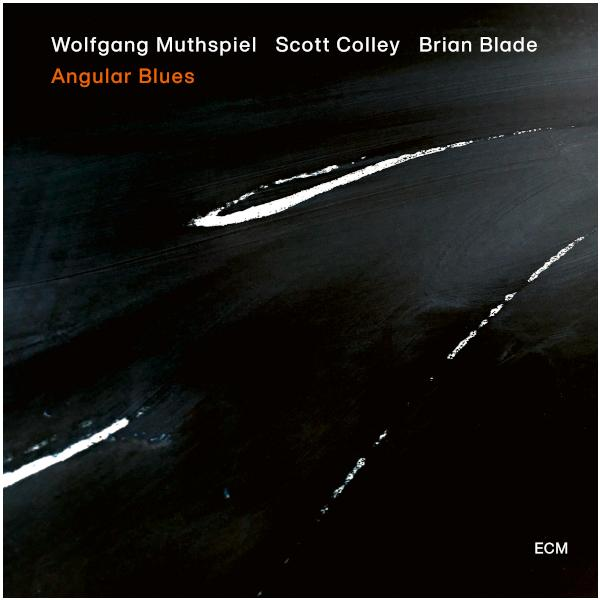 Wolfgang Muthspiel Wolfgang Muthspiel, Scott Colley, Brian Blade - Angular Blues (180 Gr) виниловая пластинка w muthspiel w s colley b blade angular blues 0602508485213