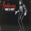 Виниловая пластинка HADDAWAY - WHAT IS LOVE? THE SINGLES OF THE 90S