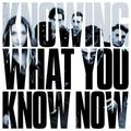 Виниловая пластинка MARMOZETS - KNOWING WHAT YOU KNOW NOW (COLOUR)