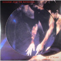 Виниловая пластинка SIOUXSIE AND THE BANSHEES - THE SCREAM (PICTURE DISC)