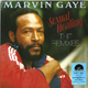 Виниловая пластинка MARVIN GAYE - SEXUAL HEALING: THE REMIXES (COLOUR)