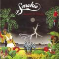 Виниловая пластинка SMOKIE - STRANGERS IN PARADISE (180 GR, COLOUR)
