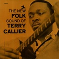 Виниловая пластинка TERRY CALLIER - THE NEW FOLK SOUND OF TERRY CALLIER (2 LP)
