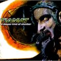 Виниловая пластинка TIAMAT - A DEEPER KIND OF SLUMBER (2 LP, 180 GR)