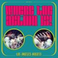 Виниловая пластинка VARIOUS ARTISTS - WHERE THE ACTION IS! LOS ANGELES NUGGETS HIGHLIGHTS (2 LP)