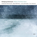 Виниловая пластинка WOLFGANG MUTHSPIEL - WHERE THE RIVER GOES (180 GR)